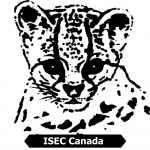 international-society-endangered-cats